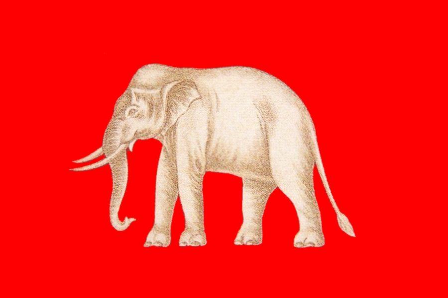 Dawna flaga Syjamu.