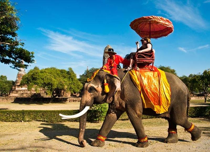Jazda na słoniach w Ayutthaya.