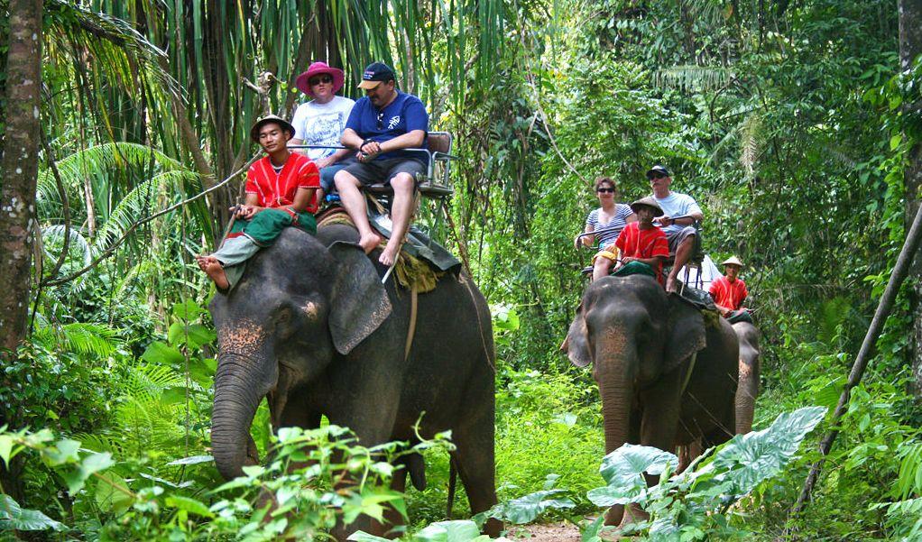 Trekking na słoniach w Tajlandii.