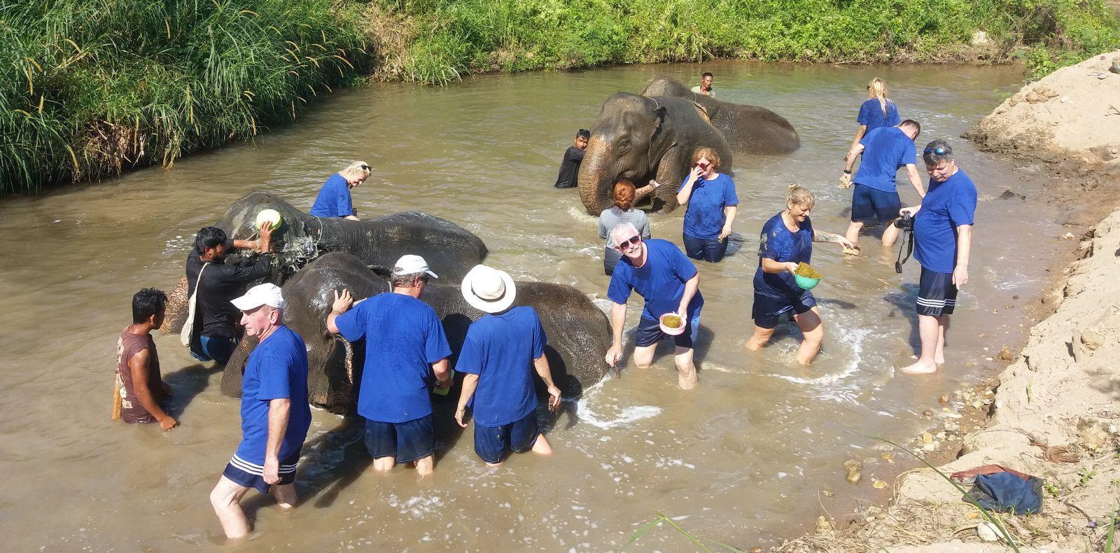 Kąpiel i mycie słoni.
