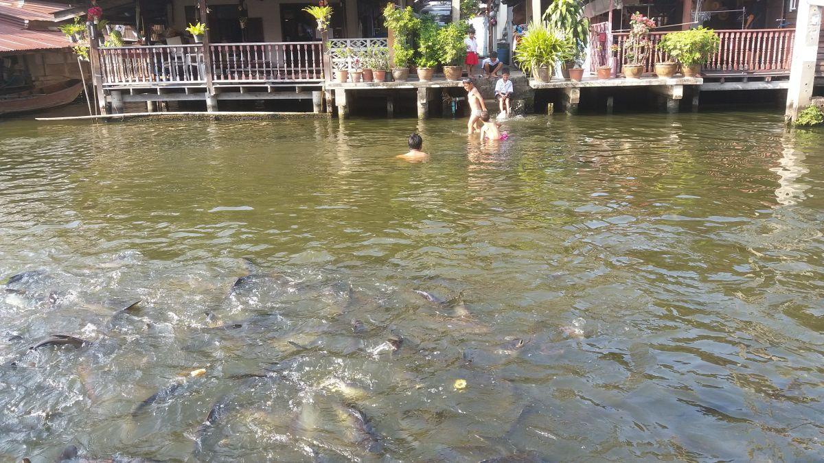 Częsty widok dzieci bawiących się w kanałach Thonburi.