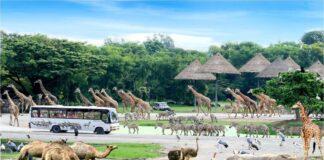 Safari World dziekie zwierzęta