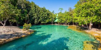 Szmaragdowa woda w Sa Morakot, Emerald Pool, Krabi.
